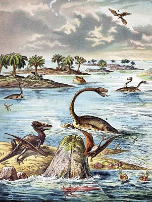 Pterodactyle Photograph - 1888 Color Lithograph Jurassic Solnhofen by Paul D Stewart