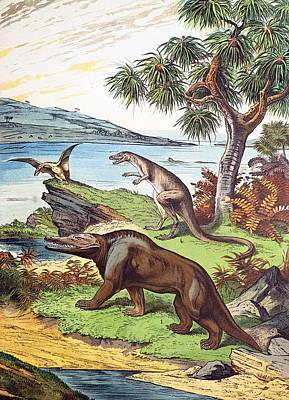 Pterodactyle Photograph - 1888 Megalosaurus, Dryptosaurus Dinosaurs by Paul D Stewart