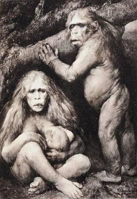 Fossil Reconstruction Photograph - 1894 Haeckel Pithecanthropus Ape Man Crop by Paul D Stewart
