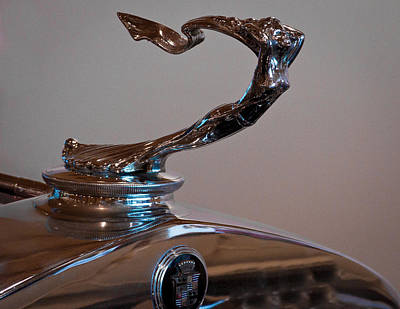 Hood Ornament Photograph - 1929 Cadillac Series 341-b Victoria Coupe by David Patterson