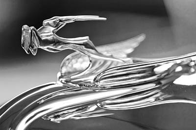 Photograph - 1931 Chrysler Cg Imperial Roadster Hood Ornament 2 by Jill Reger