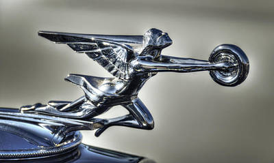 Photograph - 1934 Packard Super Eight Hood Ornament  by Saija  Lehtonen