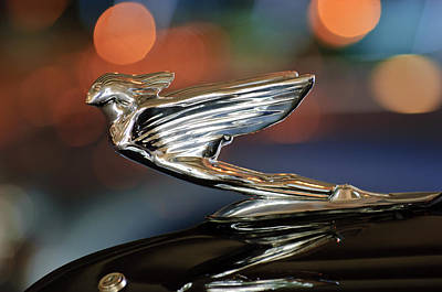 Photograph - 1938 Cadillac V-16 Presidential Convertible Parade Limousine Hood Ornament by Jill Reger