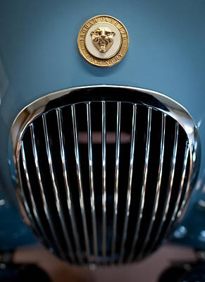 Photograph - 1952 Jaguar Hood Ornament And Grille by Sebastian Musial