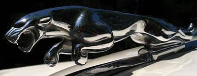 1959 Jaguar Hood Ornament Art Print by Elizabeth Coats