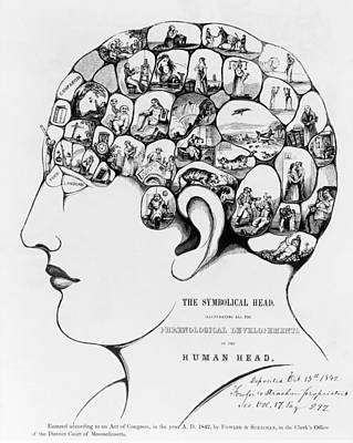 19th-century Phrenology Art Print by Library Of Congress