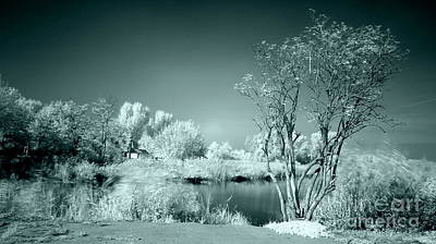 Infra Red Art Print