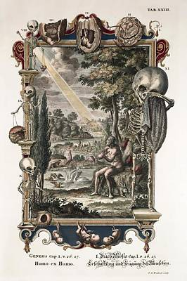 1731 Johann Scheuchzer Creation Of Man Art Print
