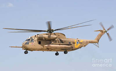Farm Life Paintings Rob Moline - A Sikorsky Ch-53 Yasur Of The Israeli by Giovanni Colla