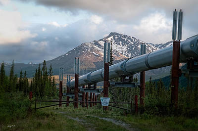 Photograph - Alaskan Pipeline by Gary Rose