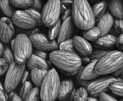 Photograph - Almonds In H2o by Henri Irizarri