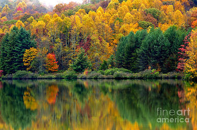Autumn Big Ditch Lake Art Print by Thomas R Fletcher