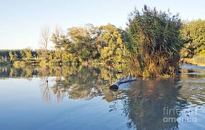 Odon Photograph - Autumn Landscape by Odon Czintos