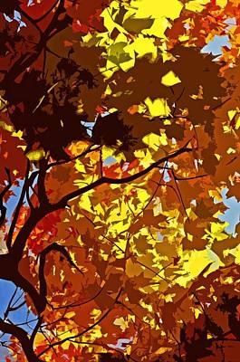 Photograph - Beautiful Fall ... by Juergen Weiss