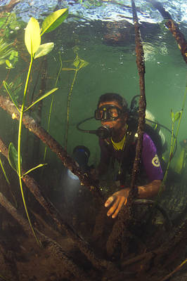 Underwater Breathing Photograph - Biodiversity Research by Alexis Rosenfeld