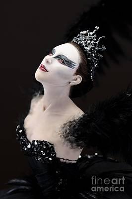 Black Swan Art Print by Vickie Arentz