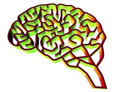 Brain Complexity, Conceptual Artwork Art Print by Pasieka