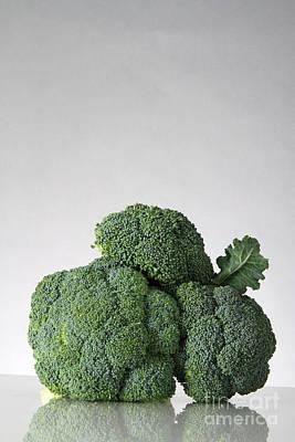 Broccoli Art Print by Photo Researchers, Inc.