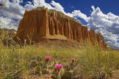 Capitol Reef National Park Catherdal Valley Art Print by Mark Smith