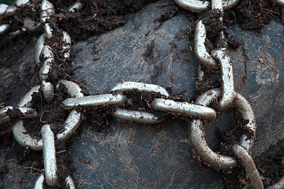 Farm Life Paintings Rob Moline - Chains on a tire by Ulrich Kunst And Bettina Scheidulin