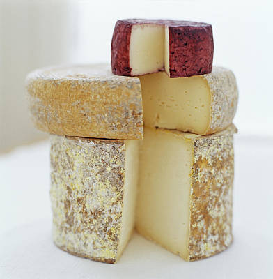 Photograph - Cheese Selection by David Munns