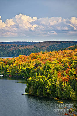 Photograph - Fall Forest And Lake by Elena Elisseeva