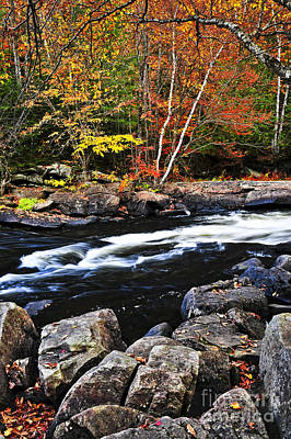 Photograph - Fall Forest And River Landscape by Elena Elisseeva