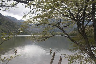 Photograph - Fishing by Masami Iida