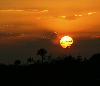 Art Print featuring the photograph Florida Sunset by Jeanne Andrews