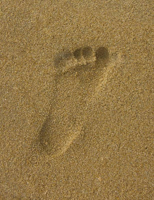 Photograph - Footprint In The Sand by Zoe Ferrie
