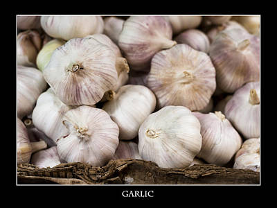 Photograph - Fresh Garlic At The Market by Zoe Ferrie