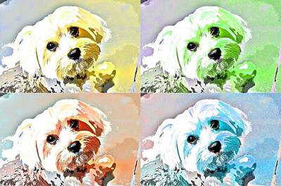 Dog Pop Art Photograph - Funky Maize by Fraida Gutovich