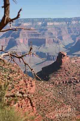 Grand Canyon National Park Usa Arizona Art Print by Audrey Campion