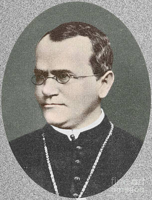 Heredity Photograph - Gregor Mendel, Father Of Genetics by Science Source