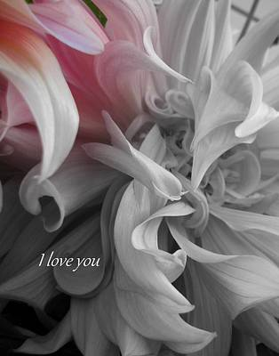 Photograph - I Love You  by Sian Lindemann