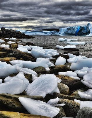 Photograph - Icebergs At St. Anthony by Steve Hurt