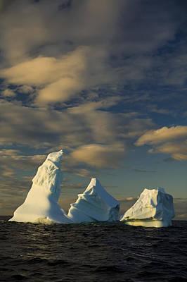 Icebergs Off Coast Of Fogo Island Art Print by John Sylvester