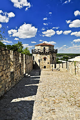Fantasy Royalty-Free and Rights-Managed Images - Kalemegdan fortress in Belgrade by Elena Elisseeva