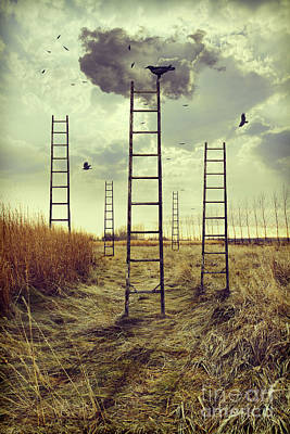 Creative Manipulation Photograph - Ladders Reaching To The Sky In A Autumn Field by Sandra Cunningham