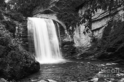 Photograph - Looking Glass Falls by David Waldrop