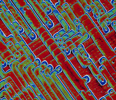 Integrated Photograph - Microchip Circuitry, Sem by Power And Syred