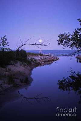 Photograph - Moonrise by Timothy Johnson