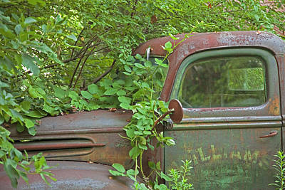 Photograph - Overgrown Rusty Ford Pickup Truck by John Stephens