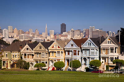 Photograph - Painted Ladies by Brian Jannsen