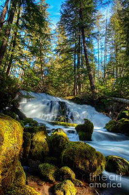 Photograph - Pearsoney Falls by Jim Adams