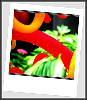 Photograph - Photo Abstaction by Anand Swaroop Manchiraju