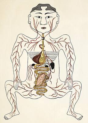 Pregnancy Anatomy, 15th Century Artwork Art Print by Sheila Terry