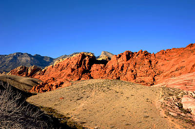 Photograph - Red Rock Canyon by Anthony Citro