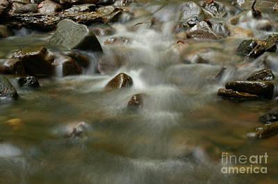 River Art Print by Odon Czintos