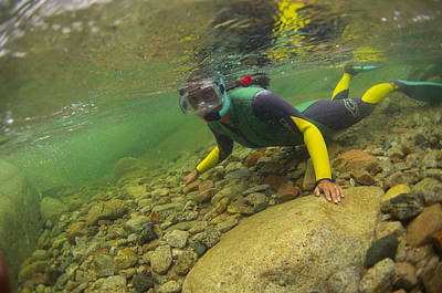 Snorkelling Photograph - River Snorkelling by Alexis Rosenfeld